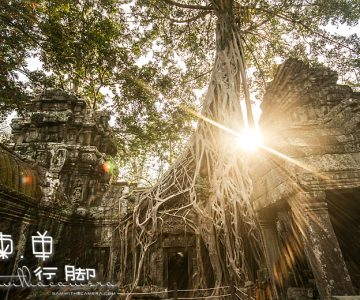 2013 Siem Reap Trip – Day 3 part 2 (Ta Prohm)