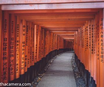 2013 Japan .026 Fushimi Inari-taisha