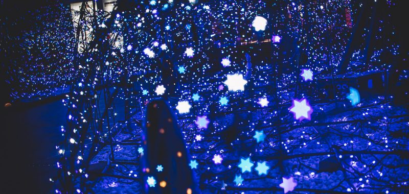 Japan Trip 4.0 - Tokyo Winter Illuminations