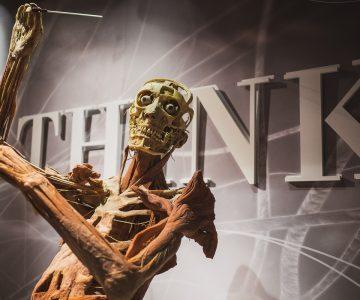 US TRIP 2017 - Bodies: The Exhibition & Avenger Station Vegas