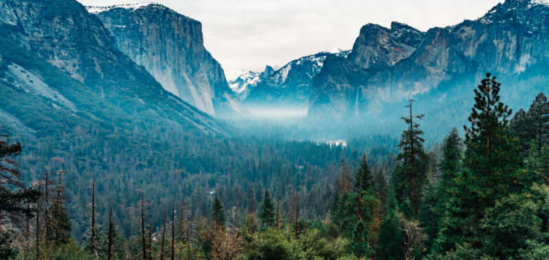 US Trip 2019 - Yosemite National Park