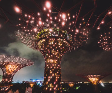 2020 Singapore Tirp Day 2 - Gardens by the bay & Solar Supertrees
